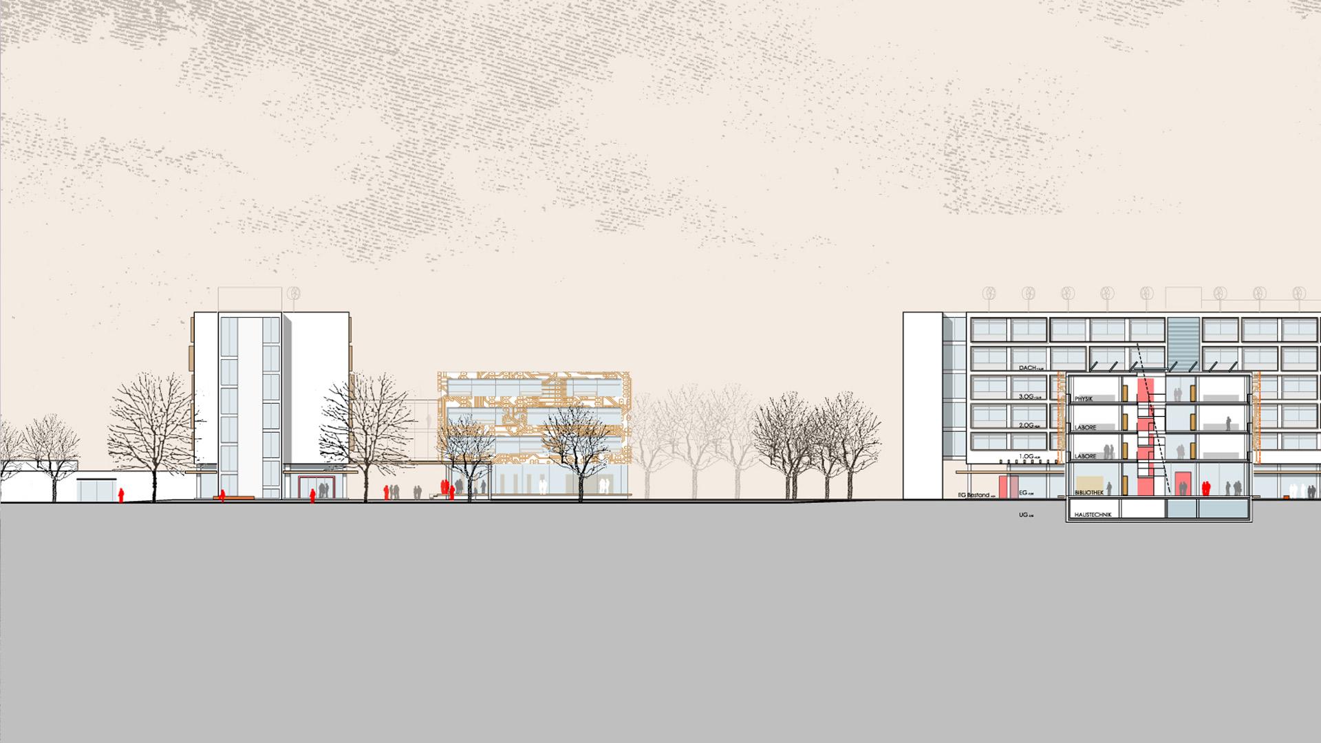 Ansicht Schnitt Heinrich Hertz Schule Assem Architekten